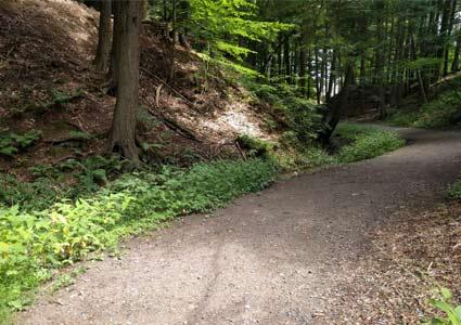 hiking1072.jpg