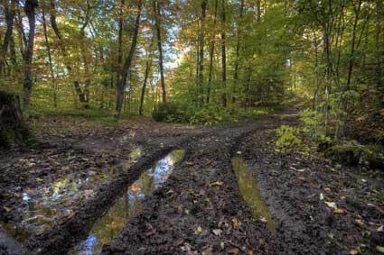 muddy-road.jpg