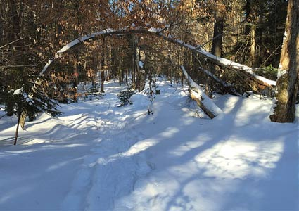 winteradk2.jpg