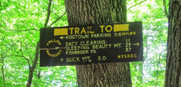trail sign on tree pointing to Darcy Clearing, Sleeping Beauty Mountain, etc.