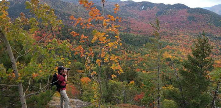 hiker on mountain taking photos with camera of foliage