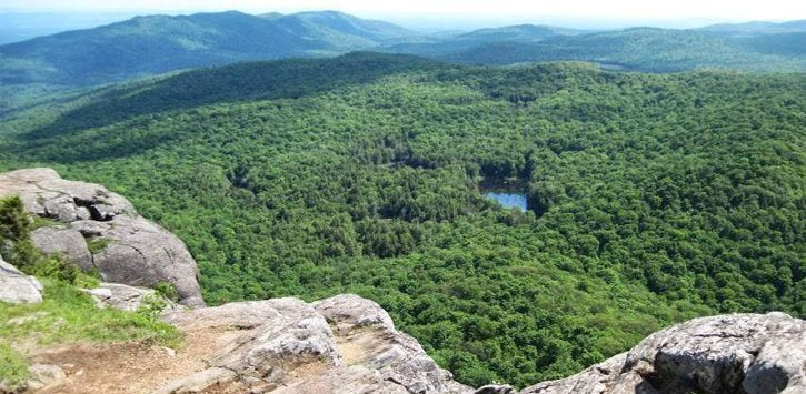 view from summit of mountains and trees