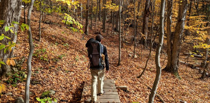 man hiking with baby on back over footbridge in the the woods in the fall