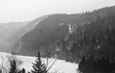 black and white winter scene