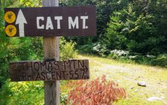 trail sign for Cat Mountain