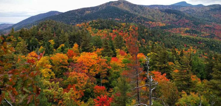 view of fall colors from baxter mountain