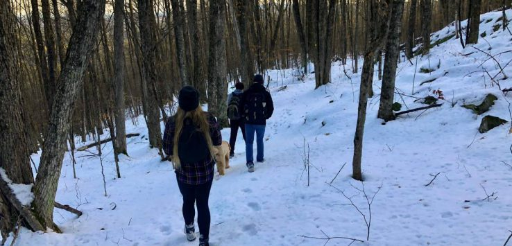 hikers walking through the woods in winter