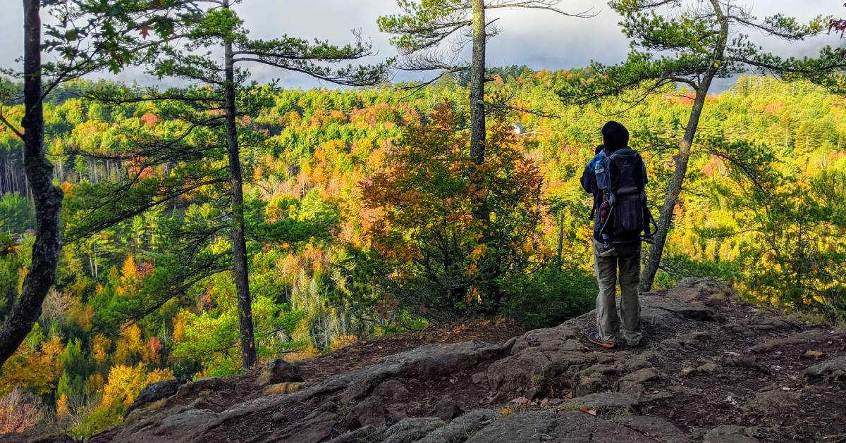dad with kid in carrier looking out at foliage on summit