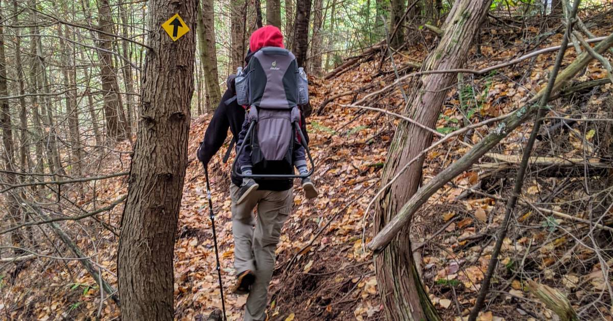 Adirondack hiker with toddler on back in the woods
