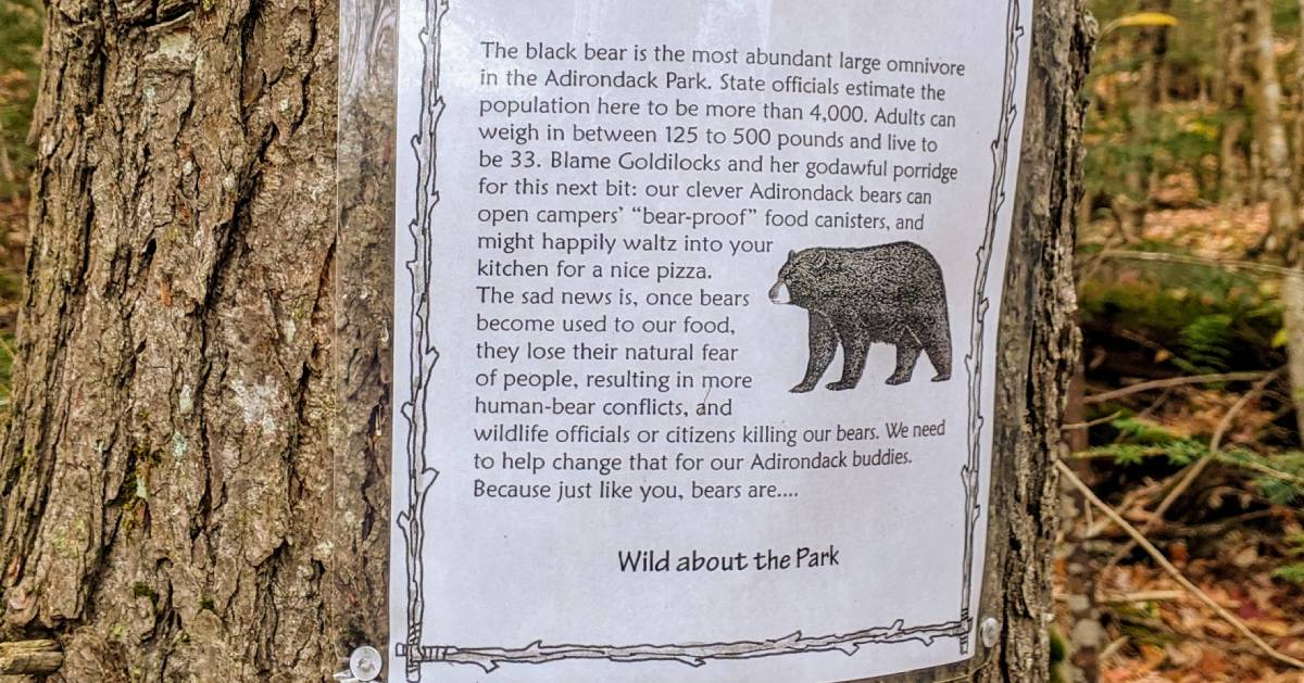 Wild About the Park educational sign on tree