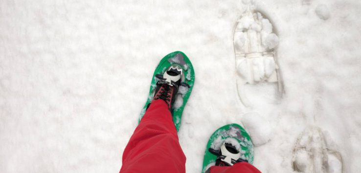 snowshoes and red pants