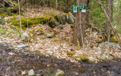 muddy trail and trail marker