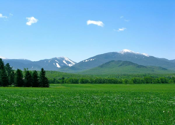 Mountains rising up behind a green pasture in spring