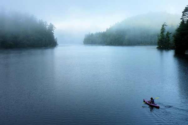 kayaker paddles out on a misty morning