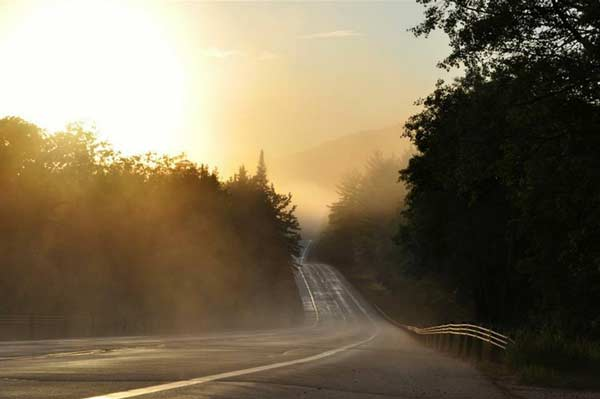 foggy morning light looking down a winding road