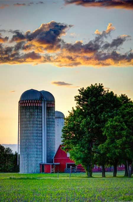 red barn and grain silos behind green trees at sunset
