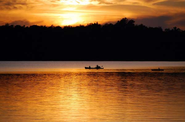 silhoutte of canoers and trees backlit by a golden sunset