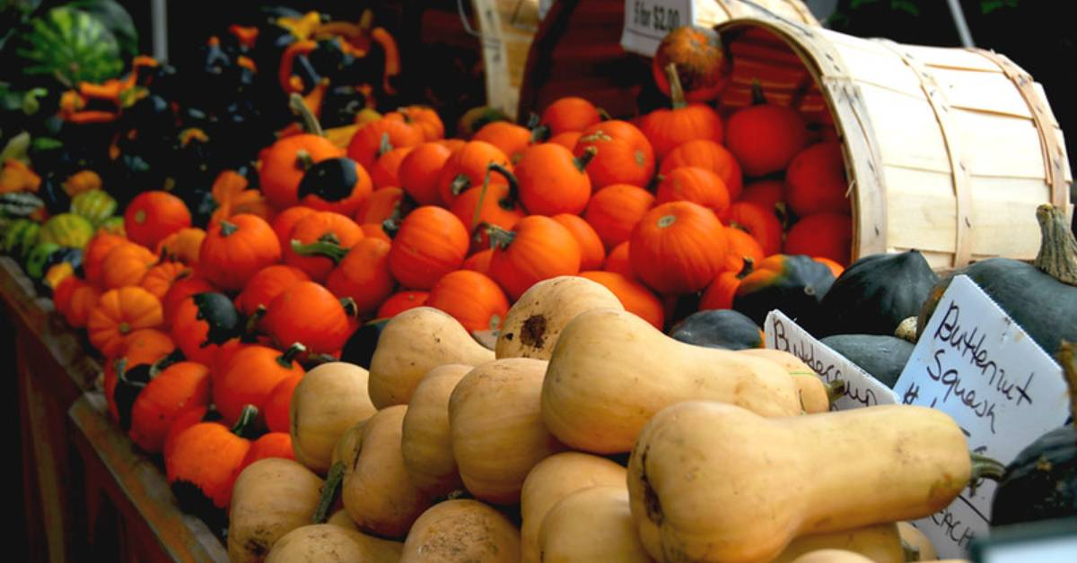 types of squash at a farmers market stand