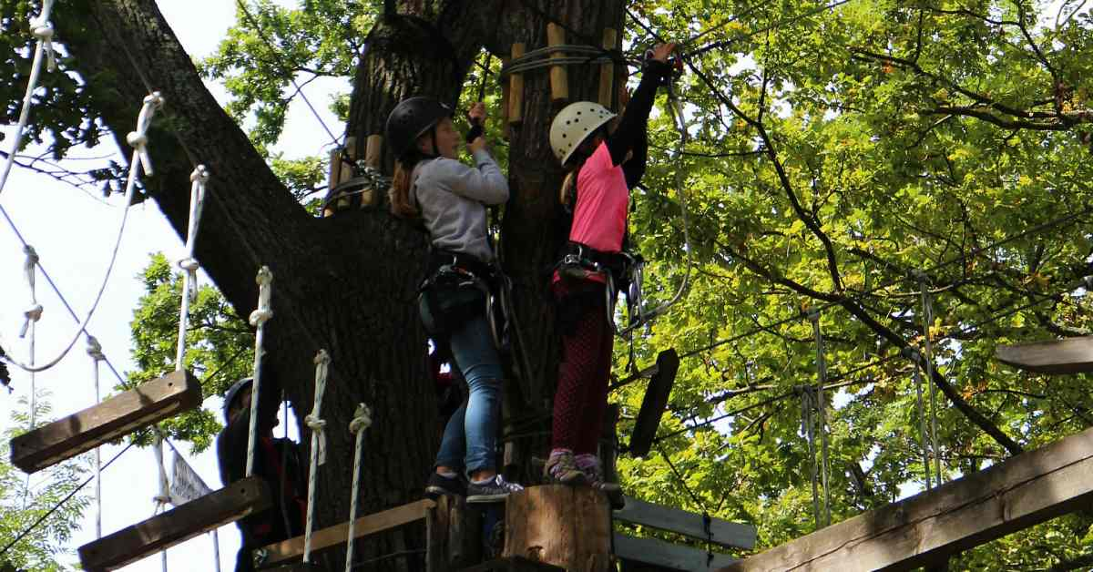 kids navigating an aerial challenge course