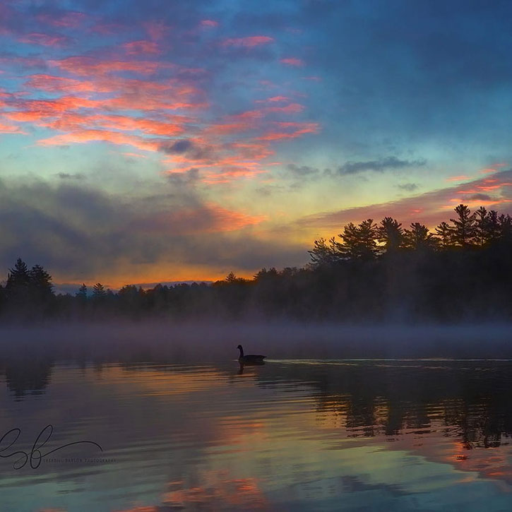 dawn at old forge pond