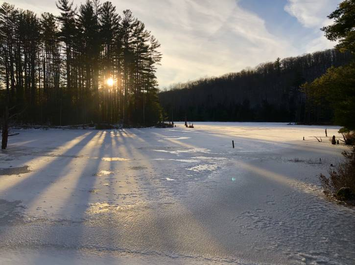 Frozen pond with sun shining through the trees