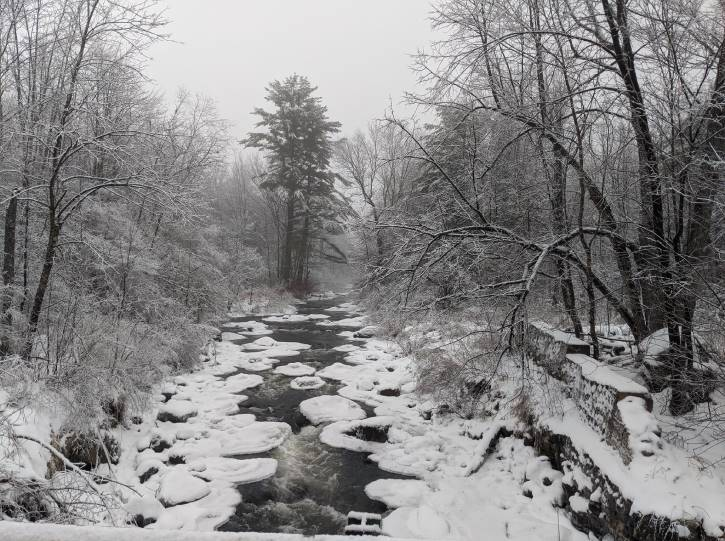 Roaring river in the winter with snowy trees