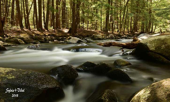 glenn creek in thurman ny