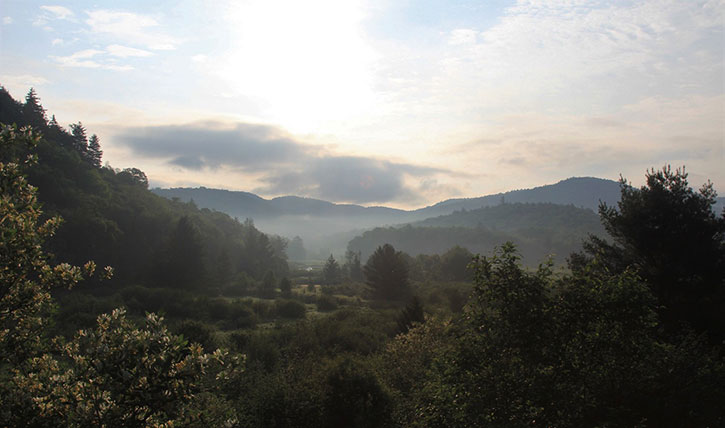 misty morning in arietta ny