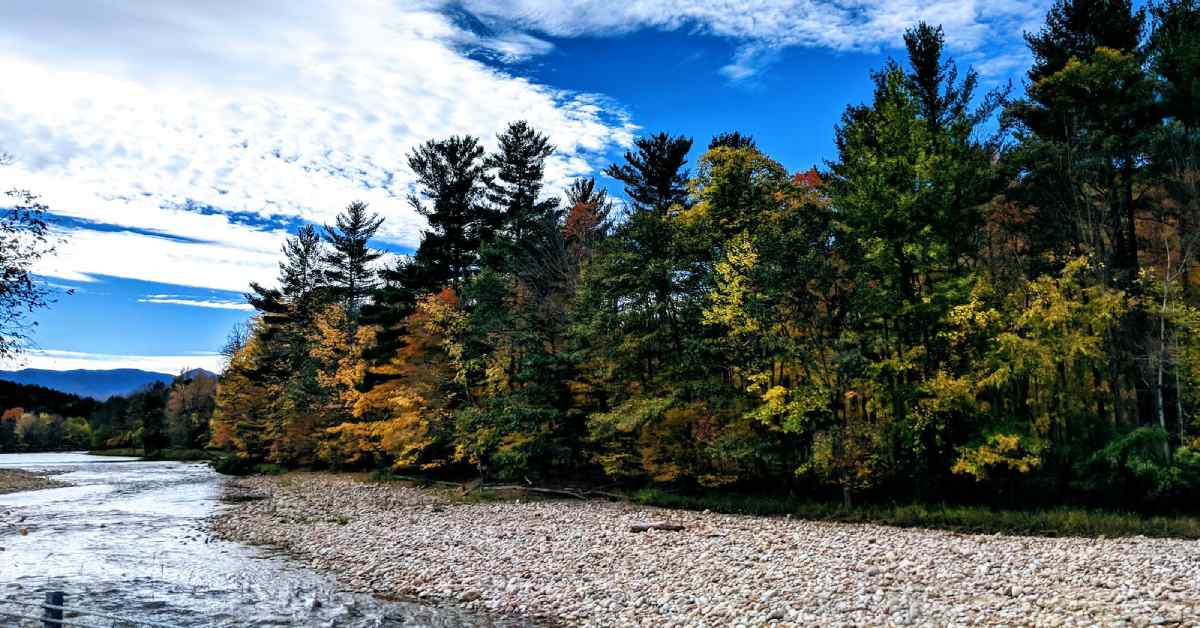 fall foliage along the ausable river