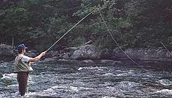 Fishing on the AuSable River