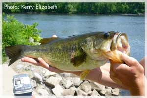 New york state fishing license information for New york fishing license online