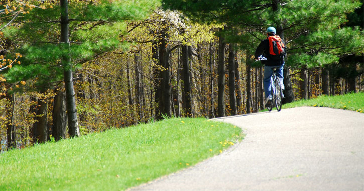 the back of a person riding a bike on a path into the woods