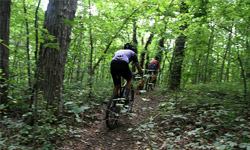biking in woods