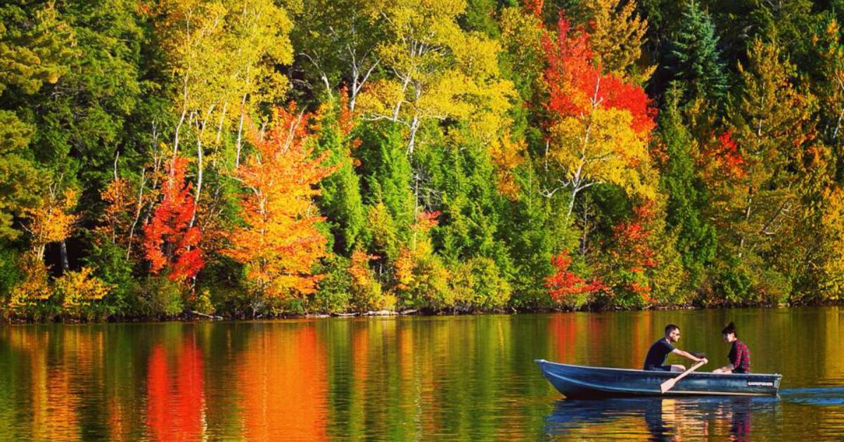a man and woman rowing a rowboat on a lake with fall foliage in the background