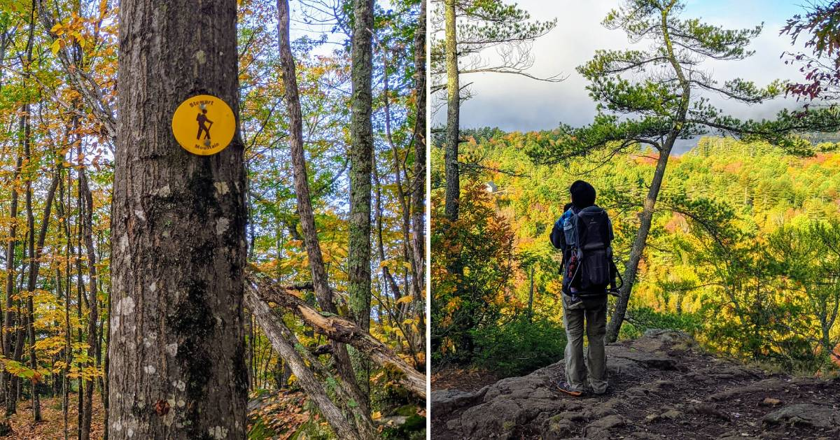 split image with trail marker on tree on the left and hiker with kid on back at summit on right