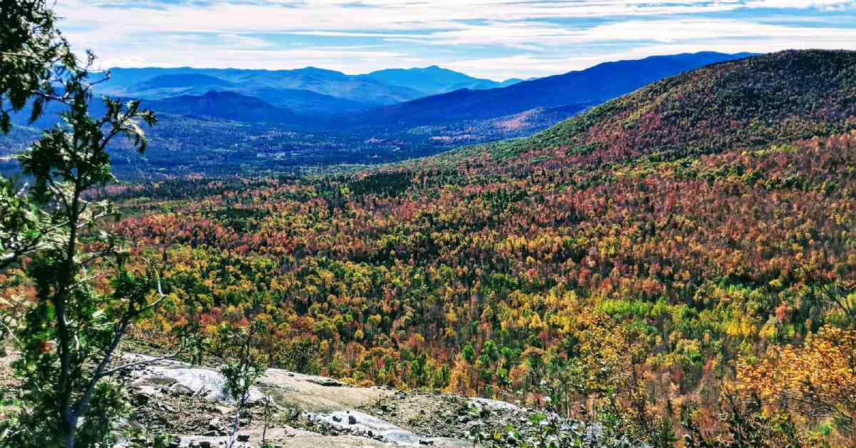view of adirondack mountains from cobble lookout