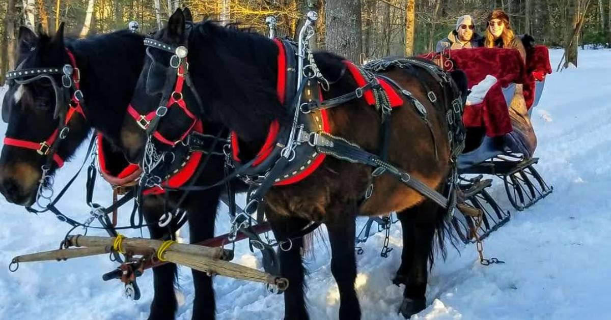 a couple on a sleigh ride