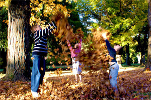 kids throwing leaves in the air