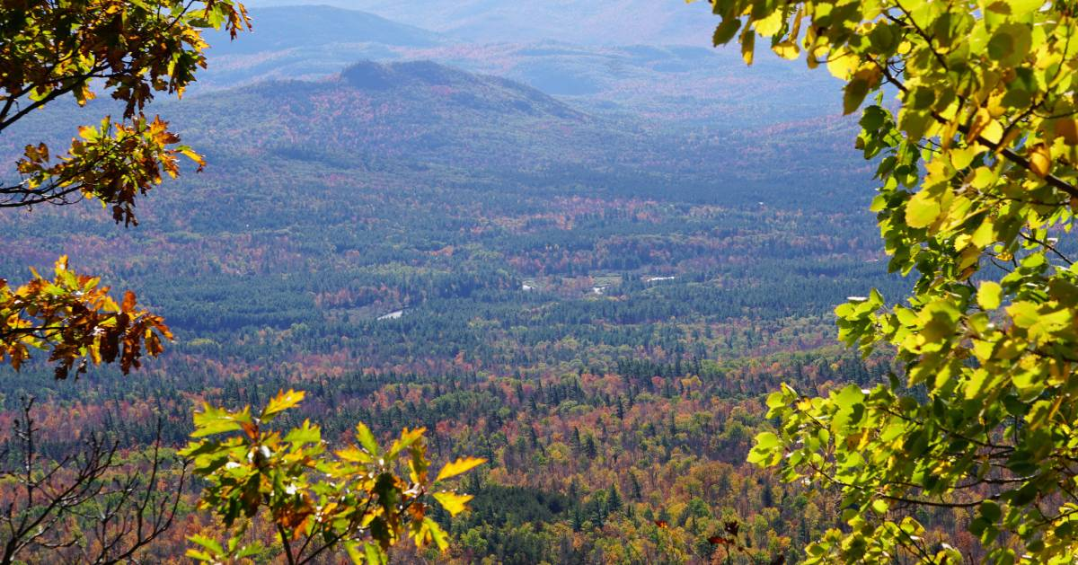 view of fall foliage from summit