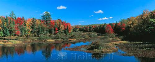 Adirondack leaf peeping