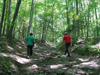 Hike Pairings