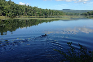 adirondack lakes and ponds