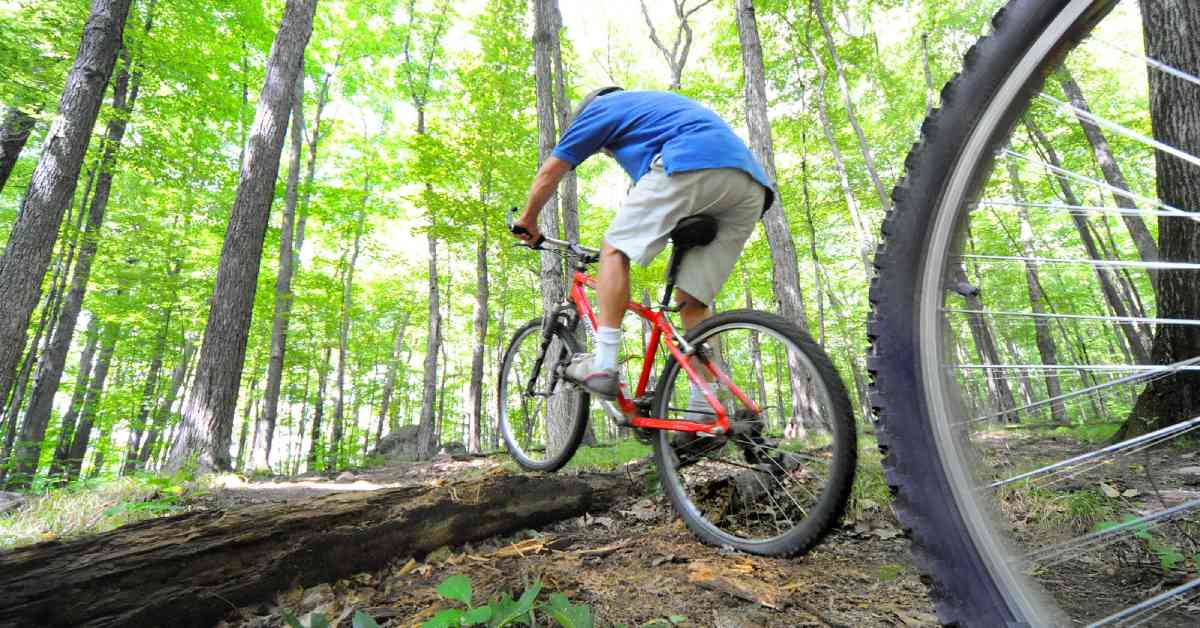 mountain bikers riding over a fallen log in the woods