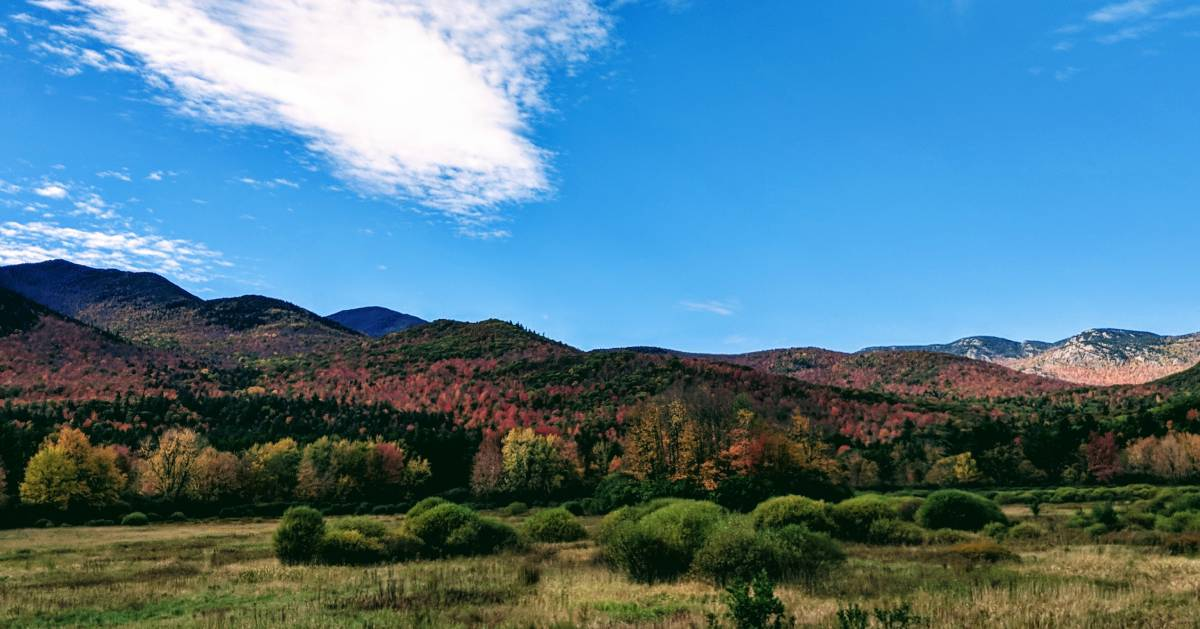 view of mountains with fall foliage