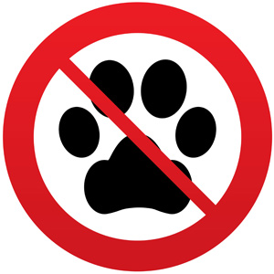 no dogs allowed symbol