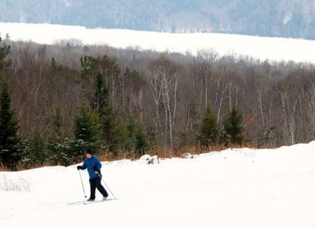 a cross-country skier