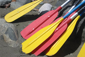 adirondack paddlefest