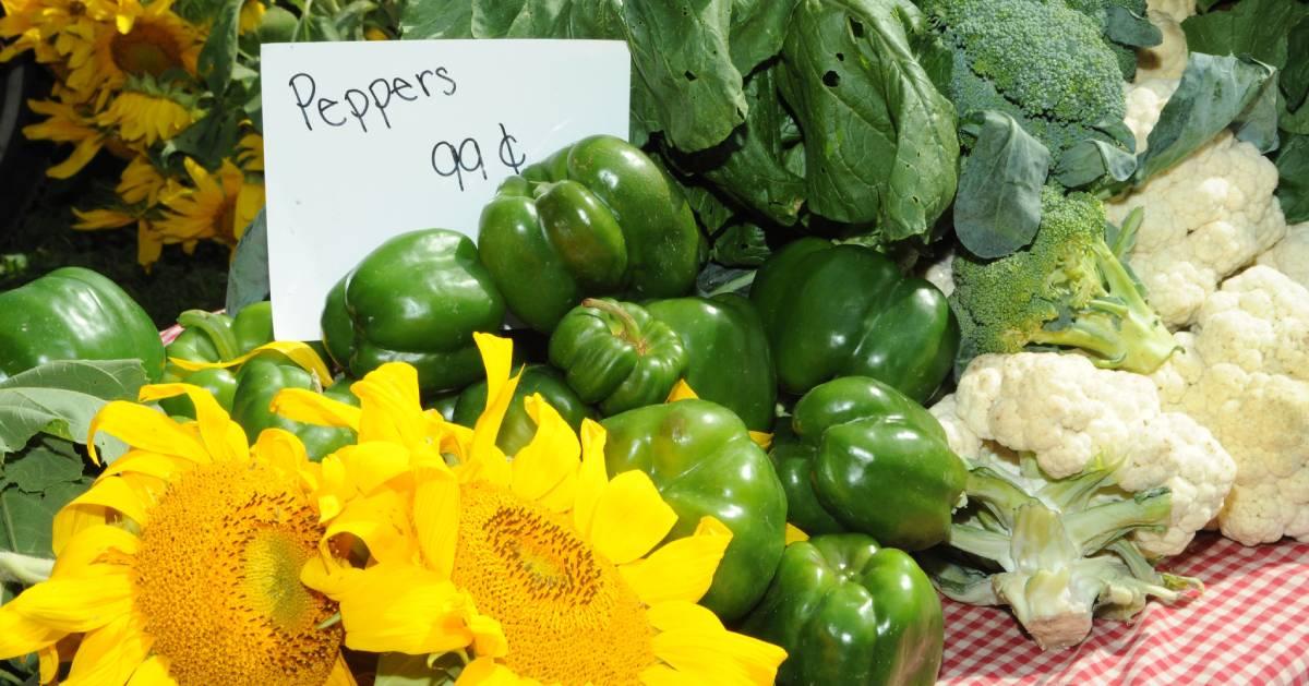 pepper display at farmers market
