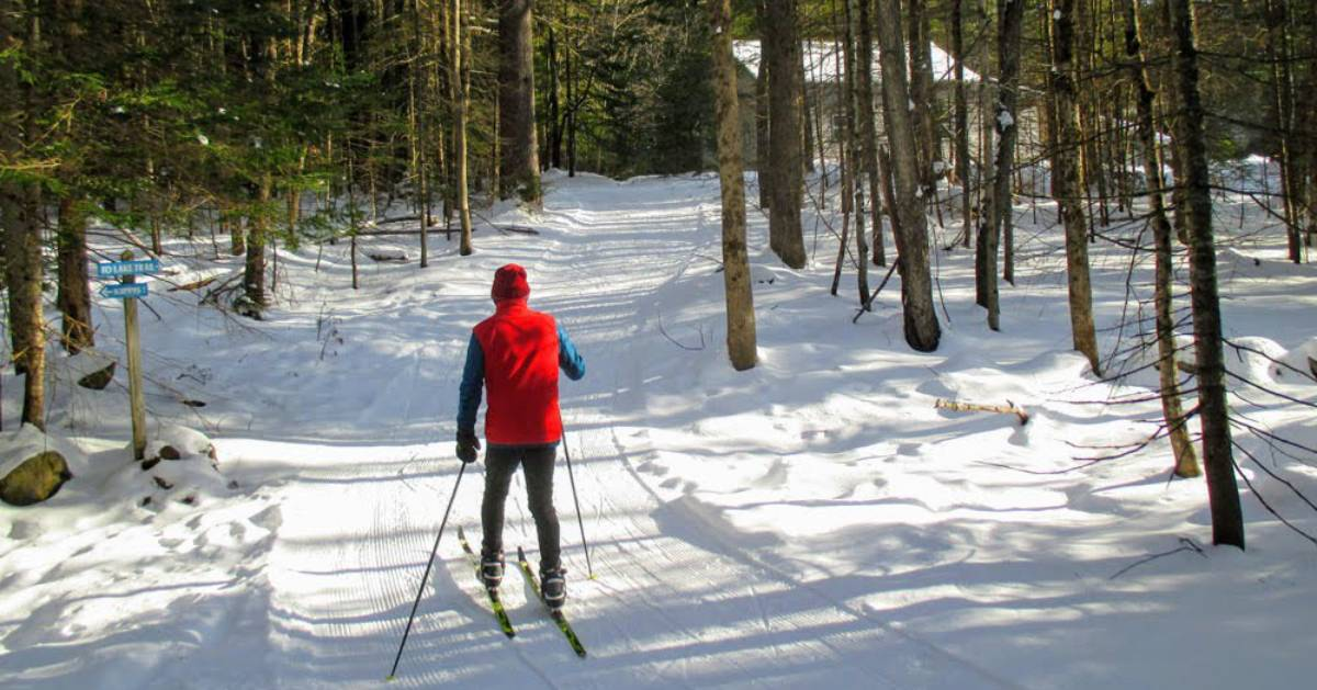 cross-country skier in red