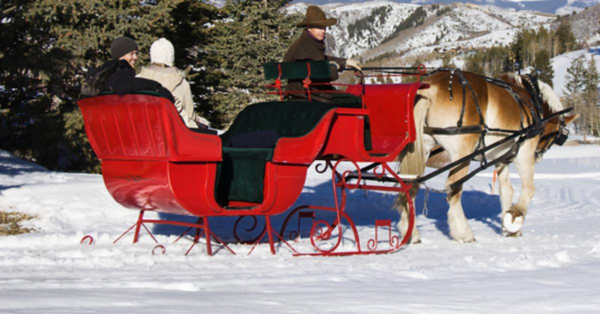 a horse drawn sleigh ride